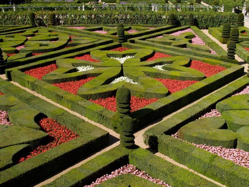 Ker se zemlji¹èe nekoliko vzpenja, so na njem oblikovali terase.