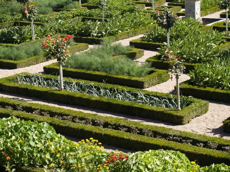 Prvotni vrtovi...
