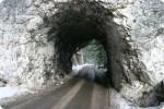 SPREHODI PO SLOVENIJI - Trnovski gozd