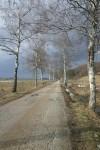 SPREHODI PO SLOVENIJI - Ljubljansko barje