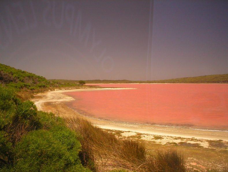 Roza jezero?